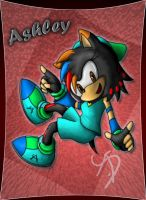 AT:  Ashley the hedgehog by AbsoluteDream