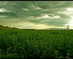 Land14 by siscanin
