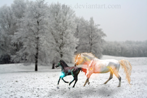 Fire and Ice by zeni-graphics