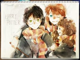 004 Harry Ron Hermione by tinashan