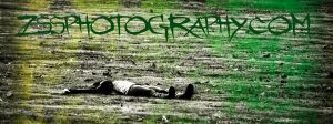 zssphotography.com banner by autumnashes1515
