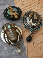 Curiosity cabinet magnets by janedean