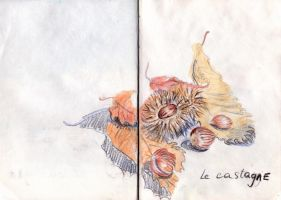 Italy 45 chestnuts by Anastasia-Artist
