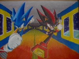 Sonic and Shadow painting by Sweecrue