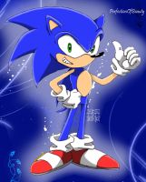 Sonic The Hedgehog . by PerfectionOfBeauty