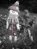 Scarecrow by FeliciaM