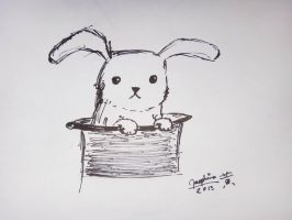 Rabbit in a Hat (Requested) by jkstrlphinaestrd1780