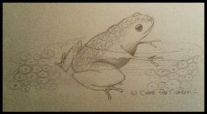 A frog, a mum to be... by majann