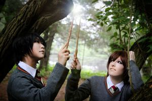 Remus + Sirius :: It's Magic by m-ichiko