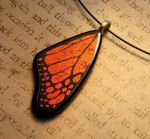 Warm Glow Fused Glass Monarch Wing by FusedElegance
