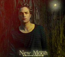 New Moon poster by carlocharmed89