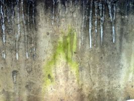 Free photo texture - Mossy frozen concrete wall #2 by croicroga
