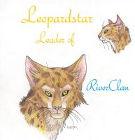 Leopardstar Faces by Mudstar-Sibera