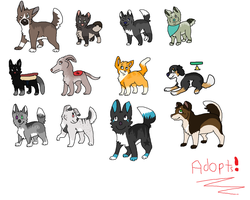 ADOPTS CHEAP OPEN!! ( ADDED ANOTHER ) by Pepsq