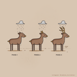When it rains..dear by NaBHaN