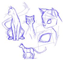 Cat sketches by JigokuHana