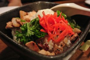 Pork Rice Bowl by Shinseigo-Takashi