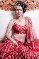 asian Bridal shoot 8 by visualsoup