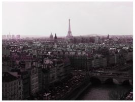 From Paris with Love by drakiross