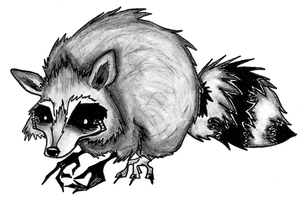 this is the raccoon by deadxfish