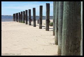 Without Pier by halley