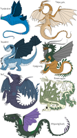 Dragon Adoptables 1 by Xbox-DS-Gameboy