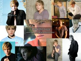 Jesse Mccartney Collage by KukiSanban14