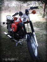 Simson by loves-to-dream