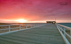 Queenscliff Pier at Sunrise by DanielleMiner