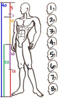 8 heads anime male proportions by sunandshadow