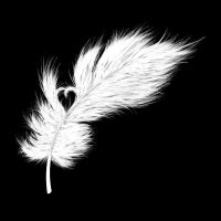 Tattoo design: Feather by i-r-annet