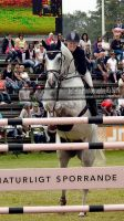 show jumping 109 by JullelinPhotography