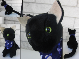 Black Cat Plushie by CraftKiwi