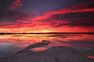 Flaming Reflection by Bassonvz