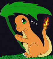 Little Charmander by WhitexFox2414