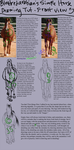 Front View - Horse Drawing Tutorial by elementofsuprize