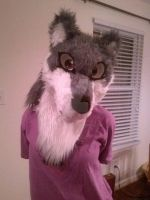 My First Fursuit Head! by Lexipup1