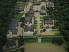 Bird's eye view of a traditional village by pallaza