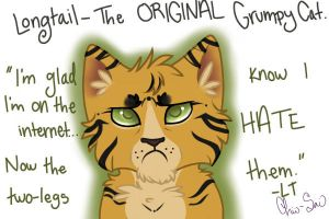 Longtail- The ORIGINAL Grumpy Cat by SpinnyCoon