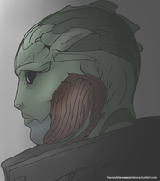 Thane Krios by FreeHandWilly