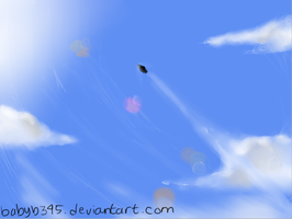 Sky And Plane by babyb345
