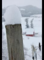 Posts and Chills by Tseegadu