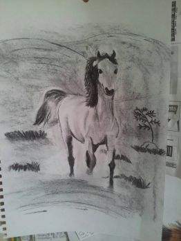 My Lovely Horse by 10fang711