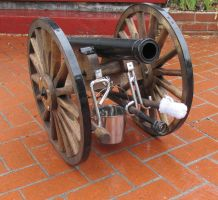 cannon front by tomsealstock