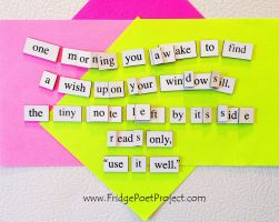 The Daily Magnet #223 by FridgePoetProject