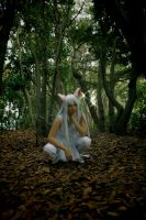 Me as Youko-Kurama by MIUX-R