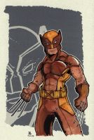 Wolverine by Pencilbags