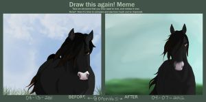 Before and After Meme - 8 months by frenchly