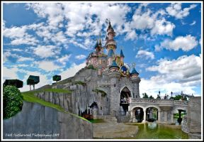 Disney Castle Panoramic by Rovanite