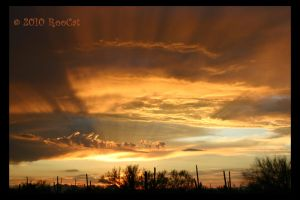 Golden Rays Monsoon Sunset II by RooCat